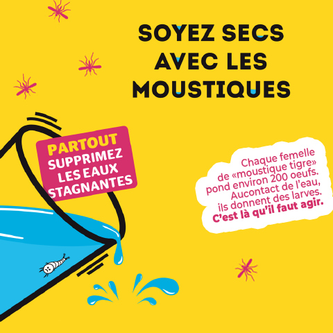 prevention moustique